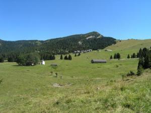 """Da Vita Trentina """"Montagne verdi, ma ancora per quanto?"""""""
